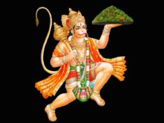 lord hanuman with sanjeevni parvat
